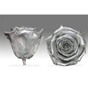 Roses4Ever SILVER XL kwiat
