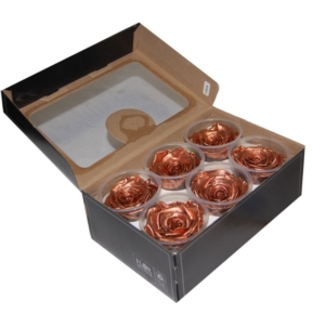 Roses4Ever COPPER XL kwiat