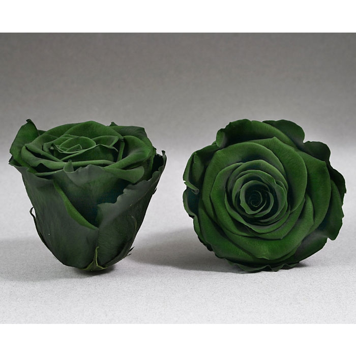Roses4ever GRE-02 XL,  kwiat