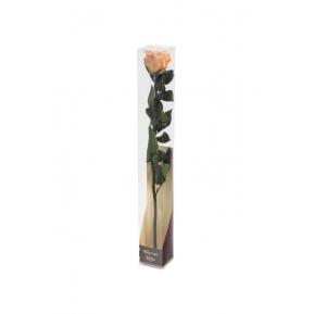 Róża stabilizowana PEA 01 50cm